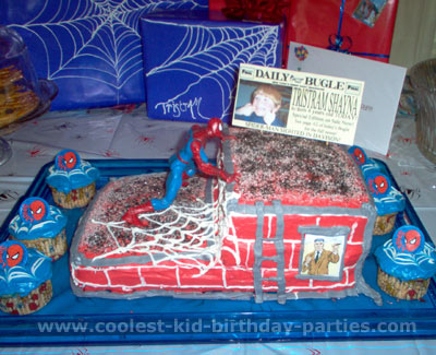 Melissa's Spiderman Party Tale